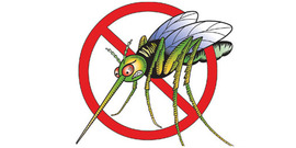 Mosquito clipart 6