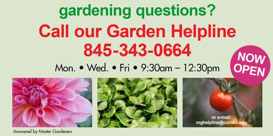 Gardening hotline