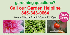 Gardening Hotline Now Open