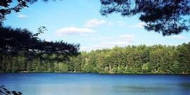 Chases lake