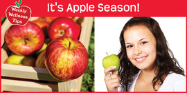 Resaved apple season graphic