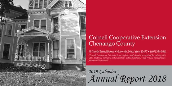 Annual report calendar final