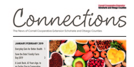 Connections January February 2019