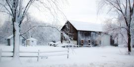 Snowy barn 556700 1920