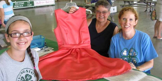 A dress that was judged during 2014 Hemlock Fair