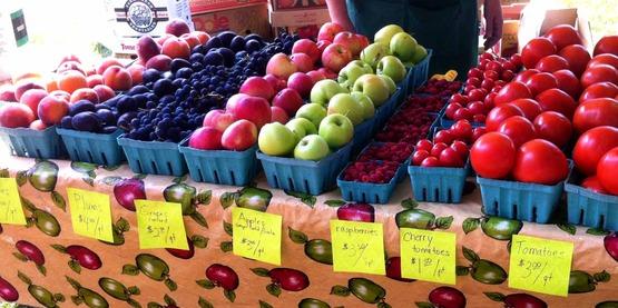 Chemung County Farm City Day, 2014