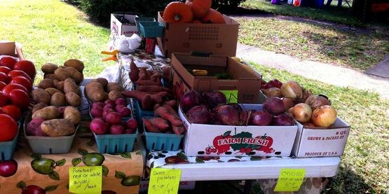 Chemung County, Farm City Day, 2014