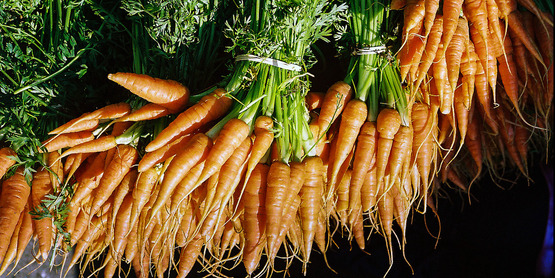 Carrots, like dill and parsley, are in the Umbel family.