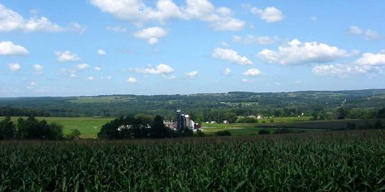 Farmland in Dryden NY
