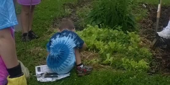 back to basics camp, gardening