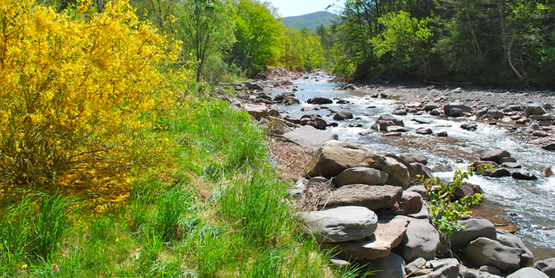 Join the Ashokan Watershed Stream Steward Volunteers! www.ashokanstreams.org
