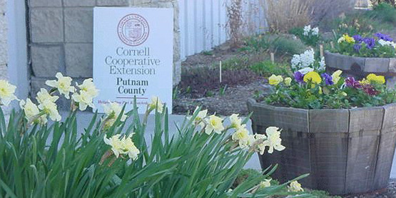 Cornell Cooperative Extension office