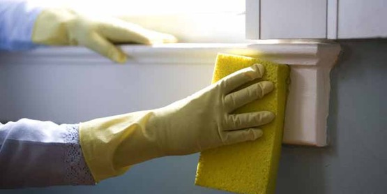 You can make non-toxic home cleaning products with lemons, baking soda & vinegar.