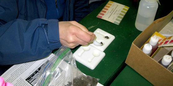 A Master Gardener volunteer tests soil pH.