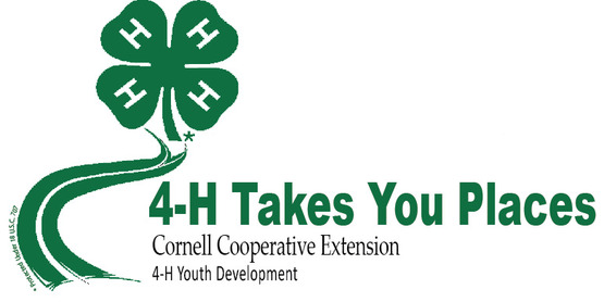 Find out what 4-H can do for you!