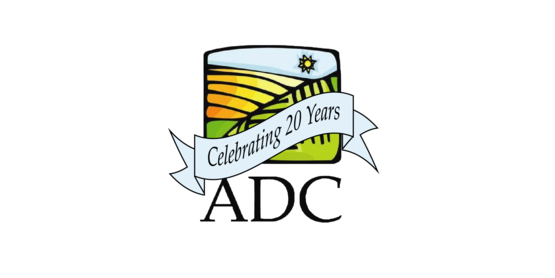 ADC 20 years