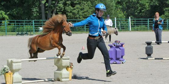 2013 Hemlock Fair participant