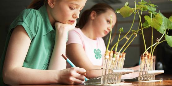 4-h afterschool science girls