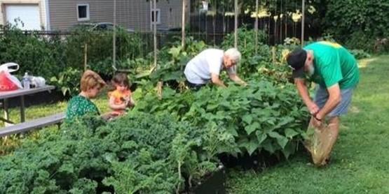 SMSJ garden urban