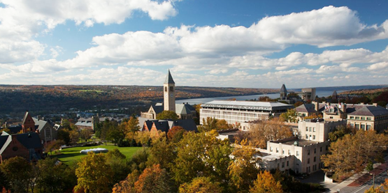 A rooftop view of central campus in the fall (Cornell University Photography)