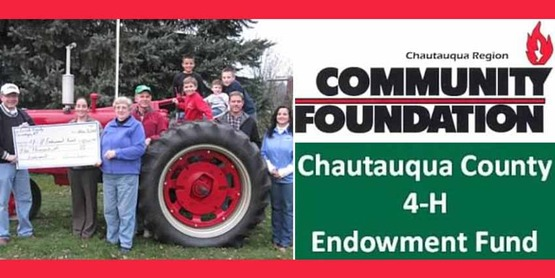 banner for 4-H Endowment fund