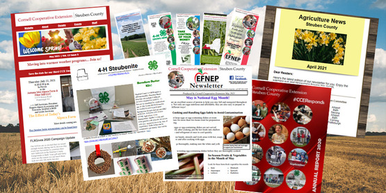 pictures of our publications