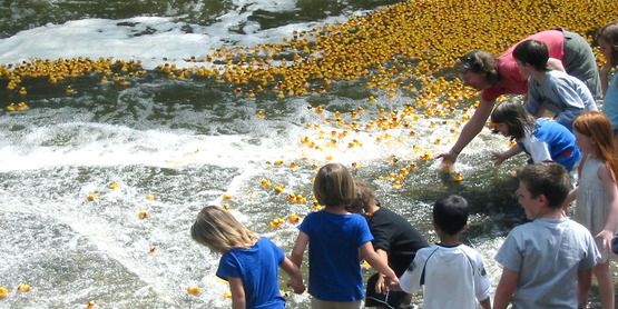 The annual Duck Race & Color Splash Run is our biggest fundraiser!