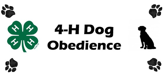 4-H Dog Obedience Schoharie County