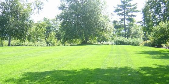 Cornell Cooperative Extension Lawn Care