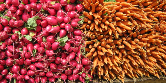 radishes and carrots on display at Unions Square market, NYC July 2014