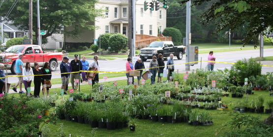 June 3rd, Annual Master Gardeners' Plant Sale