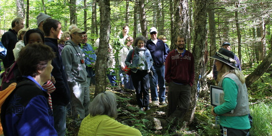 Watershed residents attend an educational stream walk on the Warner Creek.