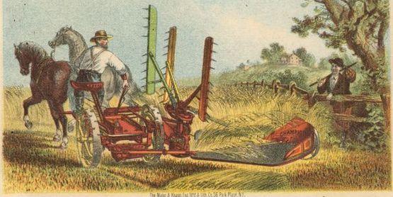 Champion Trade Card, 1875  Creator: Whiteley, Fassler & Kelly Company - Wisconsin Historical Society;
