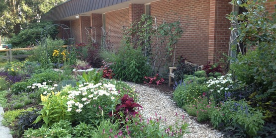 CCEDC's front garden