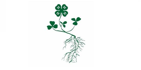 4-H Plant Logo