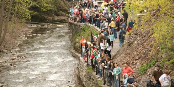 Spectators line the banks of Cascadilla Gorge waiting for the Duck Drop.