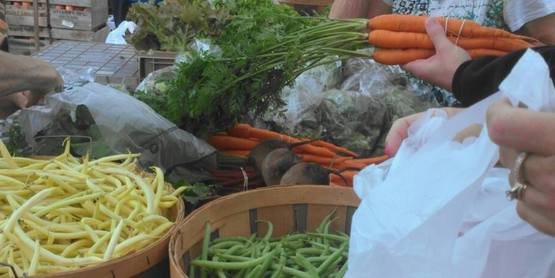 Vestal Farmer's Market