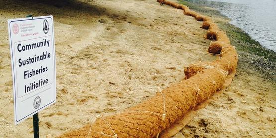 coir logs (1)
