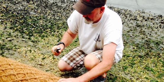 coir logs (3)