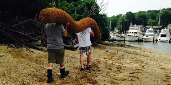 coir logs (4)