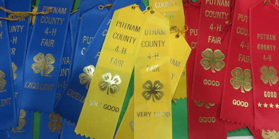 Putnam County 4-H Fair Project pre-registration deadline extended to July 13, 2018