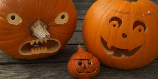 Pumpkin carvings for Halloween