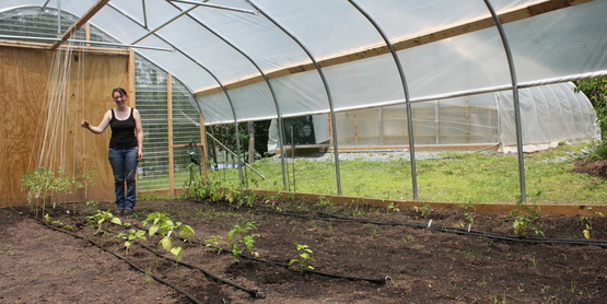 High tunnels and greenhouses assist gardeners and farmers to extend their growing season.