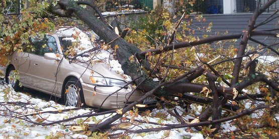 A car in Buffalo, NY crushed during a snow storm (2006)