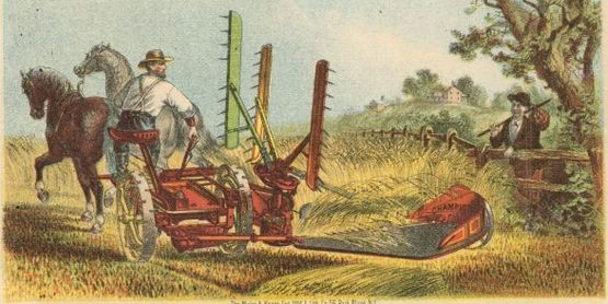 Champion Trade Card, 1875 
