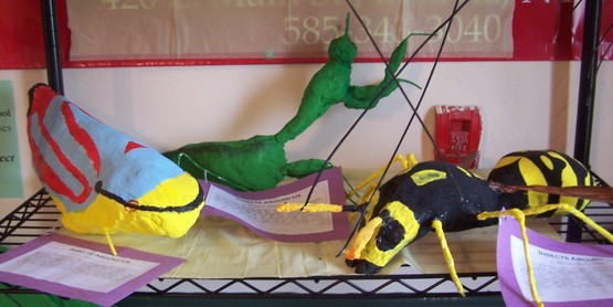 """Interpretation of an Insect"" art by local Genesee County students"