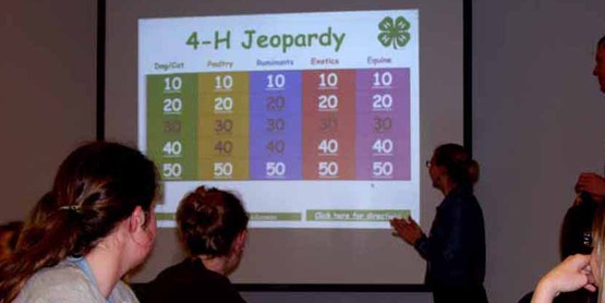 Youth participants play 4-H Jeopardy game during the 4-H Animals & Medicine program, 2009