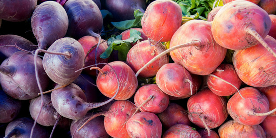 Beets can be planted in late July for harvest in Ithaca, NY