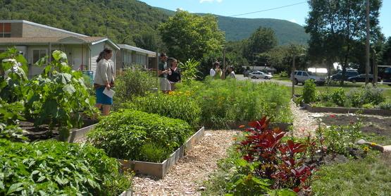 Shandaken Community Gardens