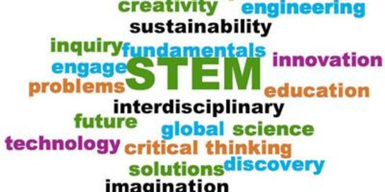 Science, Tech, Engineering, and Math (STEM) play a part in nearly all project areas.